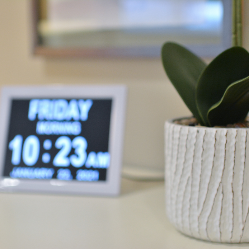 digital alarm clock and potted plant on end table